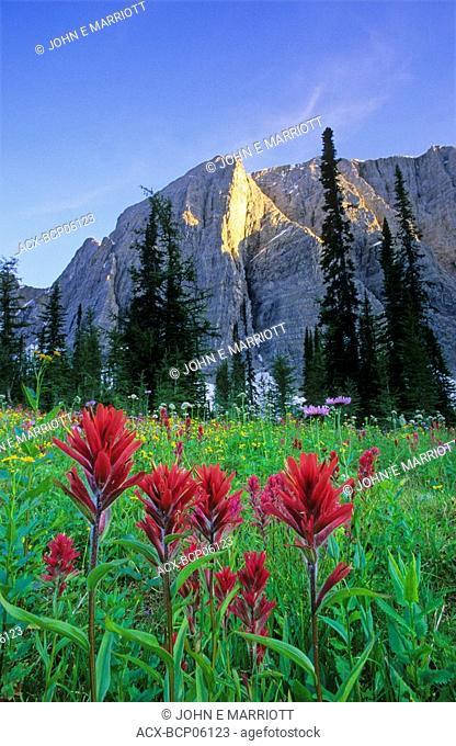 Mount Drysdale and Rockwall Pass, Kootenay National Park, British Columbia, Canada
