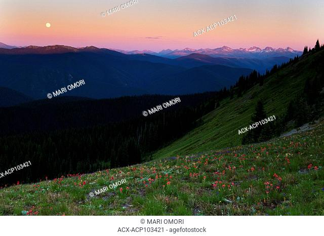 Moon rises over the Cascade Range, as viewed from the Paintbrush trail in Manning Park