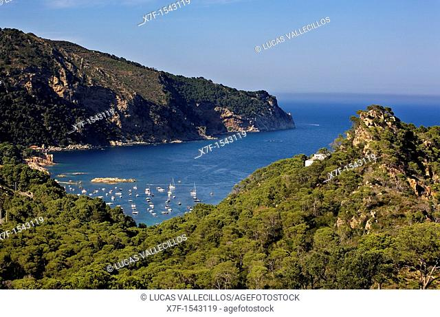 Aigua Blava  It is near Tamariu  Costa Brava  Girona province  Catalonia  Spain
