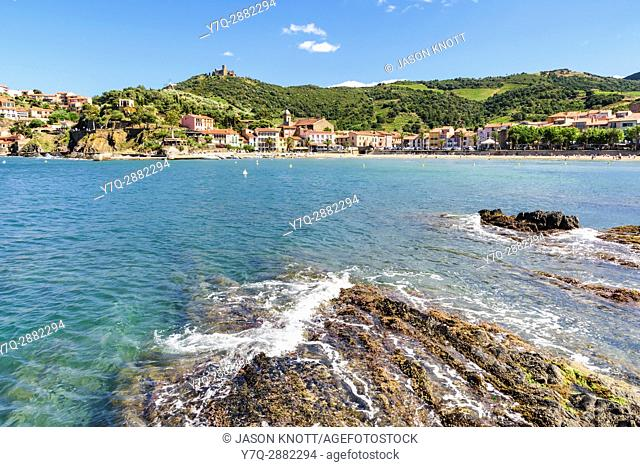 Plage de Port dâ. . Avall overlooked by the Fort St. Elme and The Mill, Collioure, Côte Vermeille, Céret, Pyrénées-Orientales, Occitanie, France