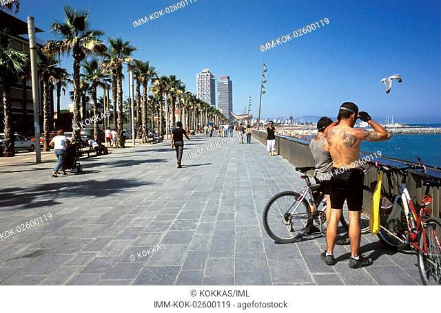 La Playa, men with bicycles , Barcelona, Spain, Europe