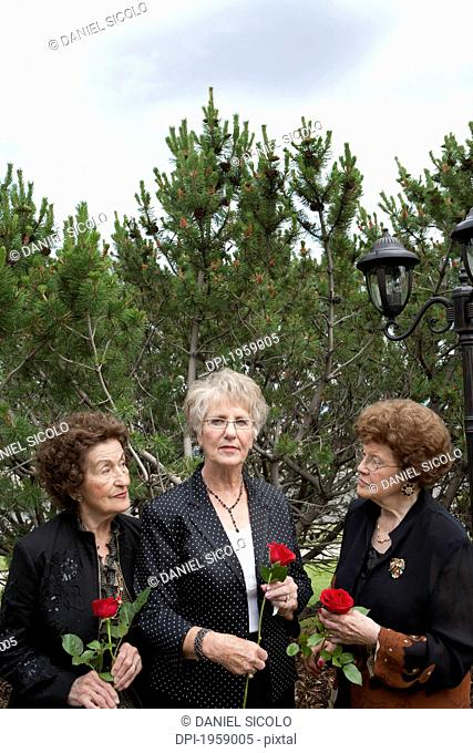 Three Women Holding Single Red Roses; Edmonton, Alberta, Canada