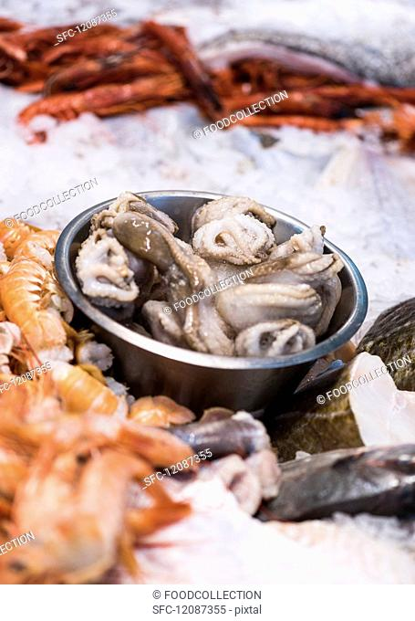 Squid, mussels and prawns on ice
