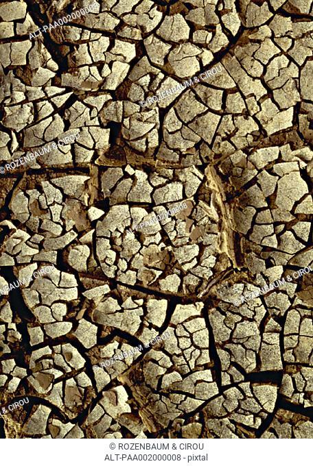 Cracked soil, close-up, full frame