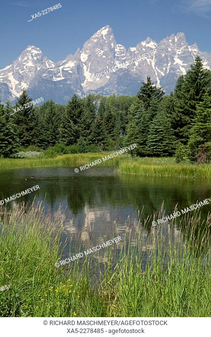 Water reflection of the Teton Range, taken from the end Schwabacher Road, Grand Teton National Park, Wyoming, USA