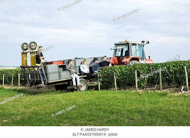 France, Champagne-Ardenne, Aube, workers resting on tractor pulled trailer in vineyard