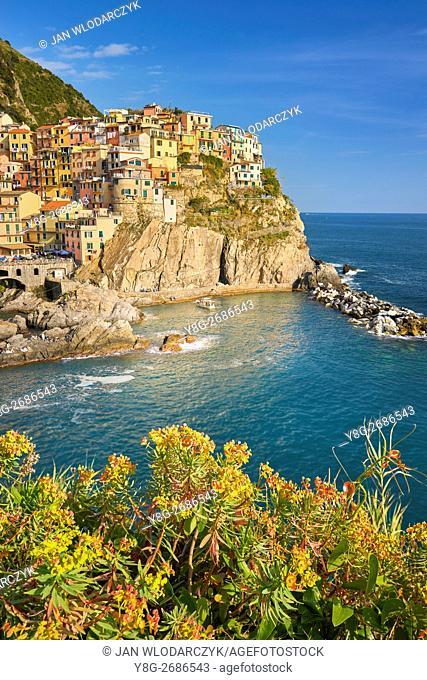 Manarola, Riviera de Levanto, Cinque Terre, Liguria, Italy