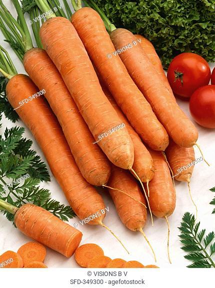 Carrots, variety 'Bolero'