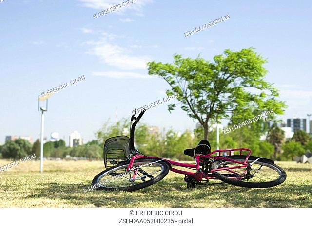 Bicycle lying on its side on grass in park