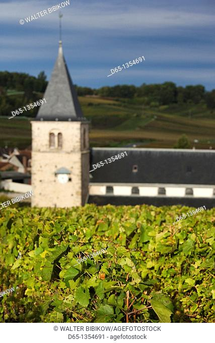 France, Marne, Champagne Ardenne, Mailly-Champagne, town church and vineyards