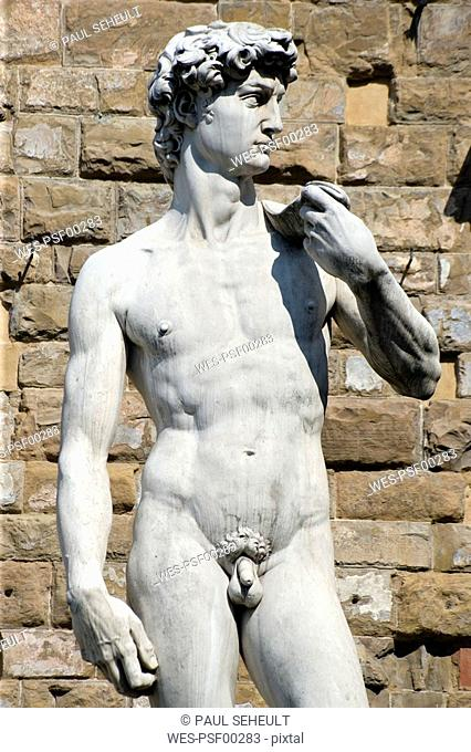 Italy, Tuscany, Florence, Statue of David, close up