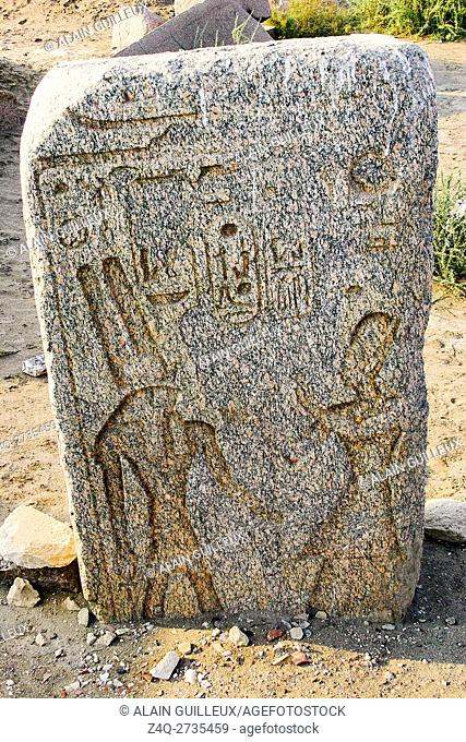 Egypt, Nile Delta, Tanis, exhibition of several ancient artifacts, between the east temple and the Mut temple : Ramses in front of Monthu
