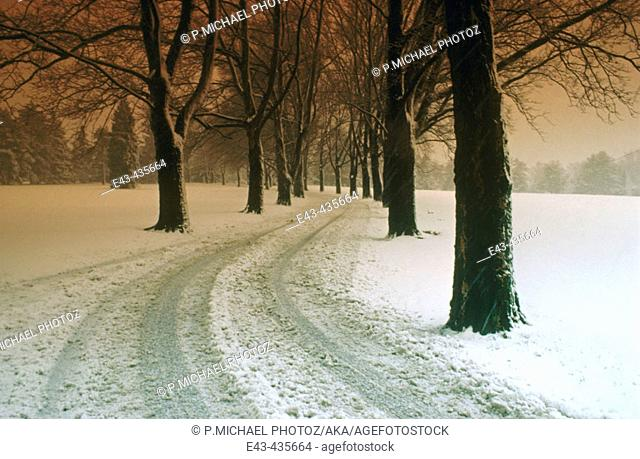 Snow and road with automobile tire tracks