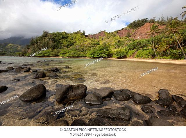 Beach in Kauai island, Hawaii, USA
