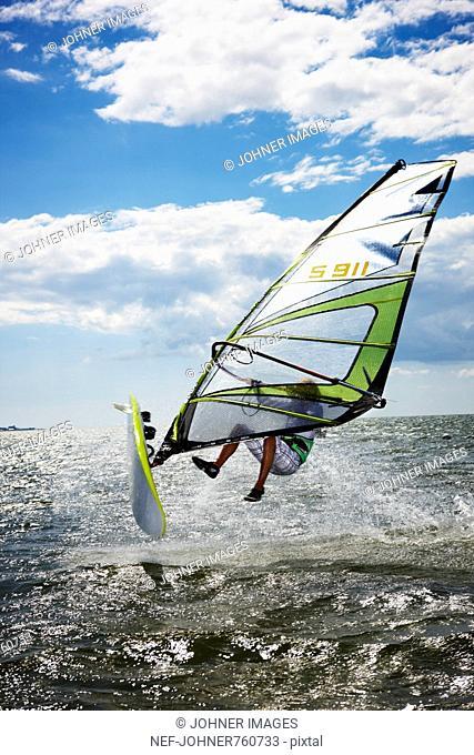 Windsurfers at sea, Sweden