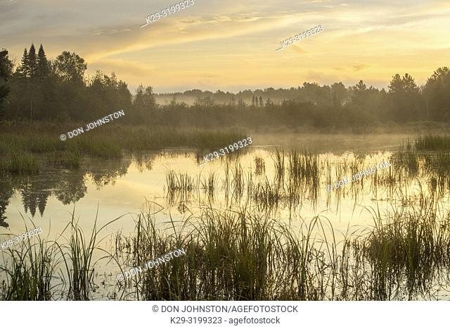 Beaver pond in early autumn with morning mists, Greater Sudbury, Ontario, Canada