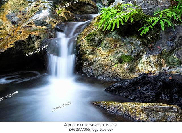 Cascade on Limekiln Creek, Limekiln State Park, Big Sur, California USA