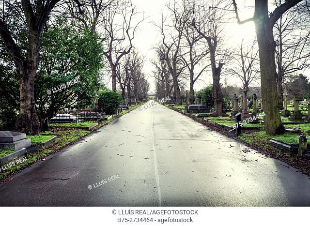 Brompton Cemetery. Chelsea, London, England