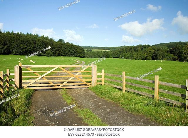 Farmland, Lake District National Park, UK