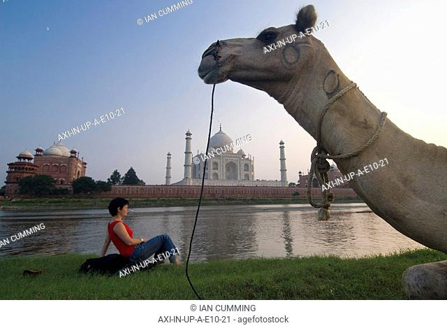 Camel in front of woman sitting on rucksack admiring the Taj Mahal