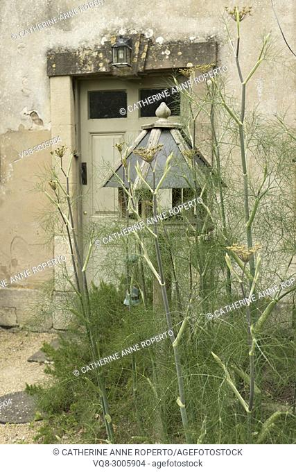 Mellow teal coloured rustic bird house amongst sweet smelling fennel herbs near the kitchen gardens of Frampton Court, the Cotswolds, England