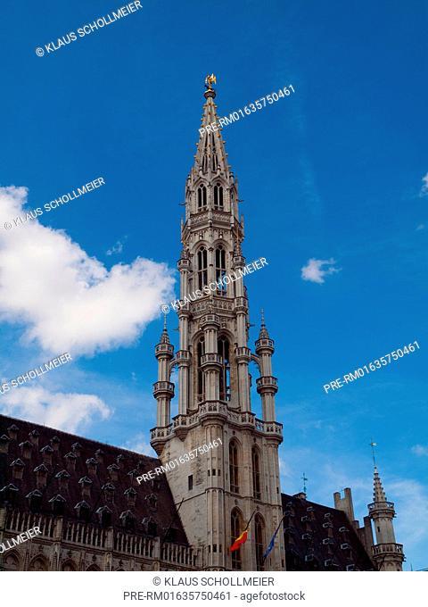 Town Hall, Brussels, Belgium, July 2015 / Rathaus, Brüssel, Belgien, Juli 2015