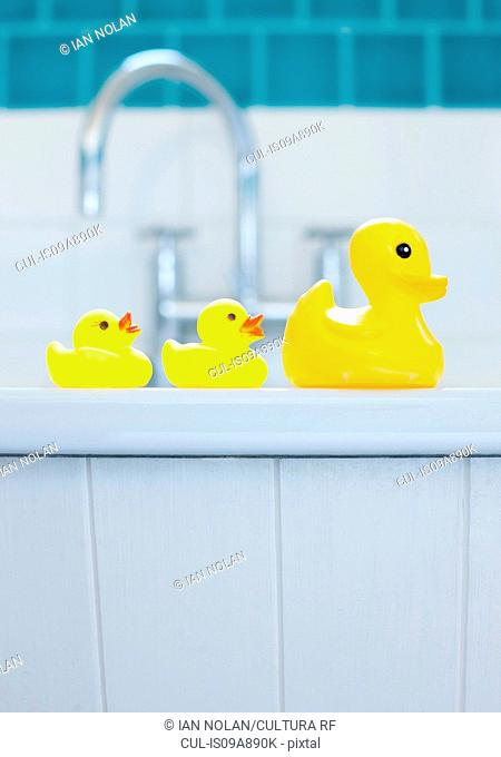Row of three yellow rubber ducks for bathtime