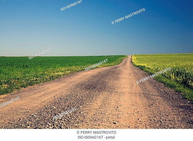 Dirt road through fields, Saint-Jean, Ile d'Orleans, Quebec