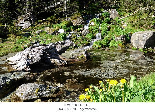 Switzerland, Europe, Uri, Gurtnellen, Fellital, Fellibach, brook, waterfall, spring