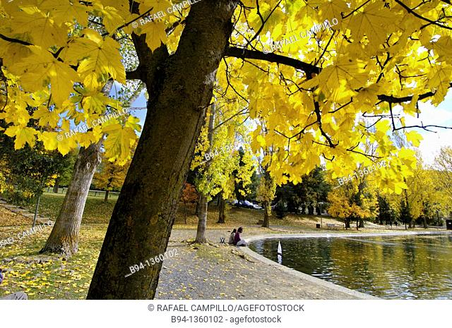 People with remote controlled model boat, Osseja lake in autumn, Pyrenees-Orientales, Languedoc-Roussillon, France