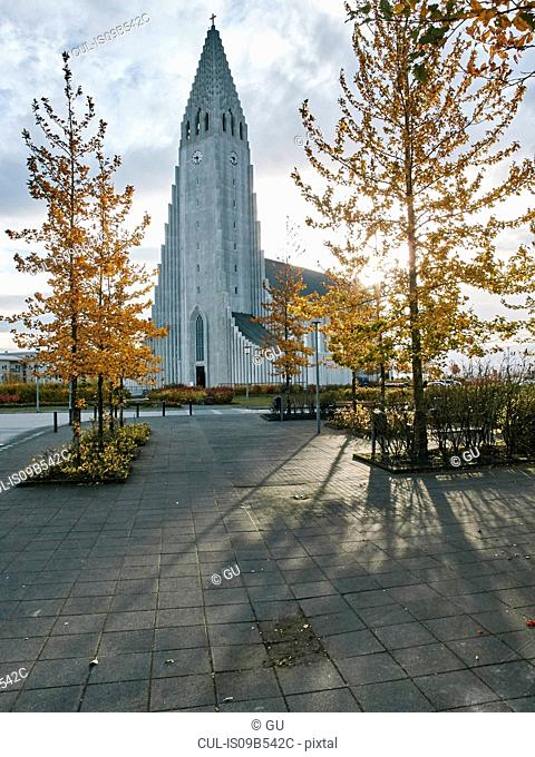 Reykjavik cathedral and trees with autumn leaves, Reykjavik, Iceland
