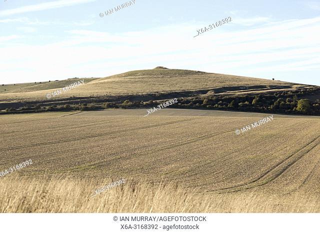 Adam's Grave long barrow burial mound, Walkers Hill, Alton Barnes, Wiltshire, England, UK