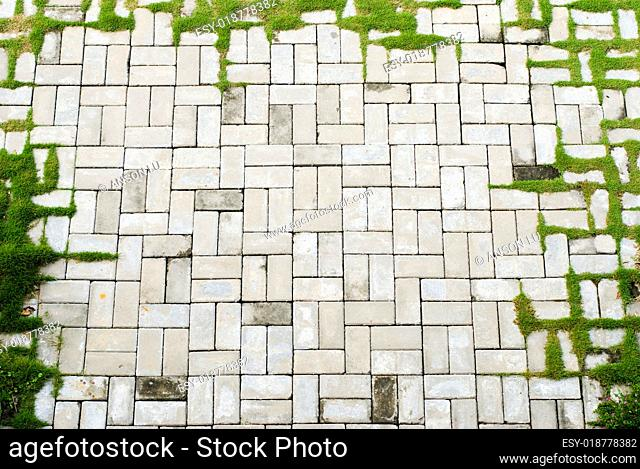 aged brick sidewalk frame