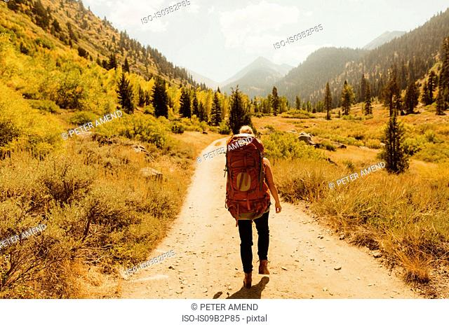 Woman wearing backpack, walking along rural pathway, rear view, Mineral King, Sequoia National Park, California, USA
