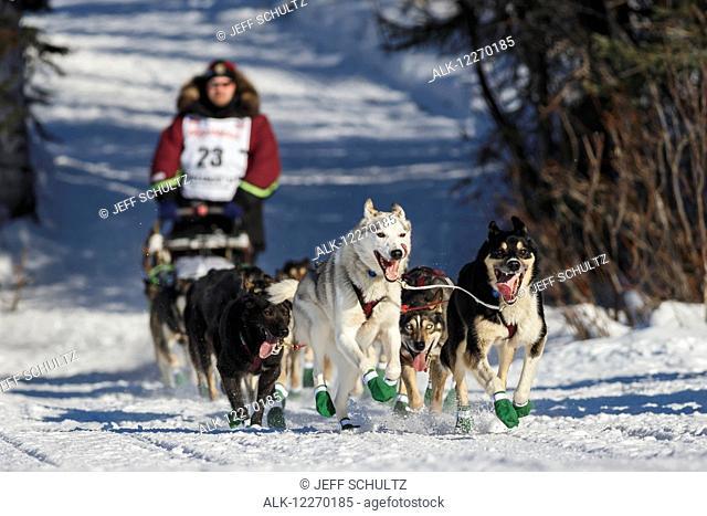 Aaron Burmeister's team runs onto Long Lake during the Iditarod 2014 restart in Willow, Alaska
