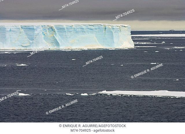 Drifting ice and Tabular icebergs, Weddell Sea, Antarctica