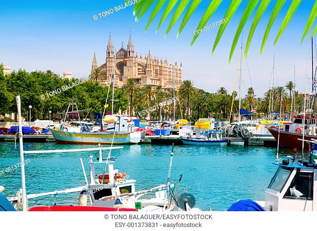 Majorca la Seu cathedral view from marina port of Palma de Mallorca Spain