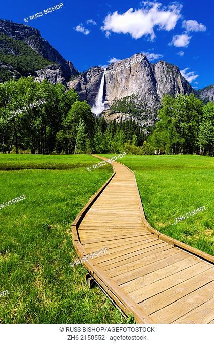Boardwalk through meadow under Yosemite Falls, Yosemite National Park, California USA