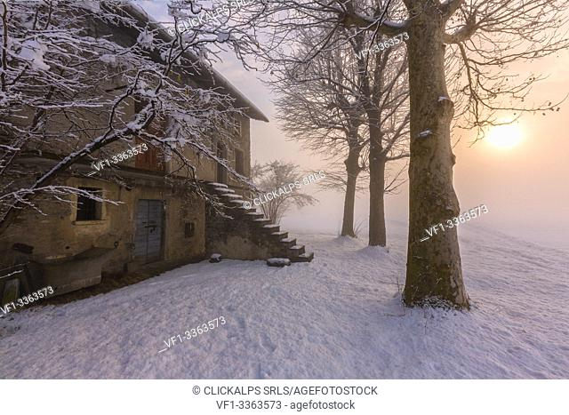 House in the snowy landscape during a foggy sunrise, Selvetta, Forcola, Valtellina, Sondrio province, Lombardy, Italy