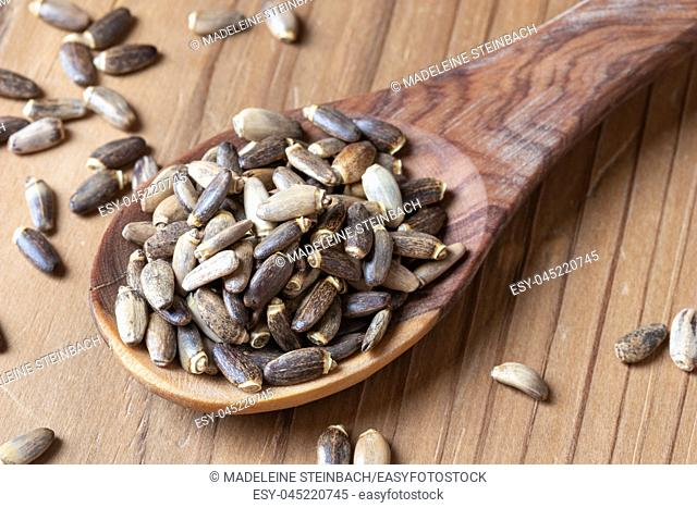 Milk thistle seeds on a wooden spoon