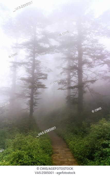 E'mei Mountain, Sichuan province, China - The view of beautiful landscape in Mt. Emei