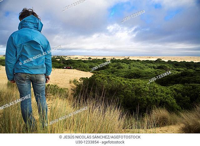 Tourists in Doñana National Park, El Rocío  Huelva, Andalucia  Spain