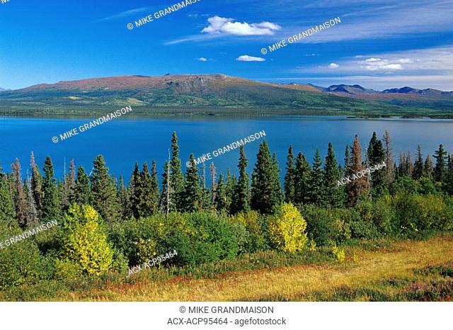 Dezadeash Lake and the Coast Mountains Haines Road Yukon Canada