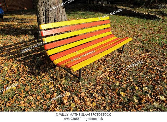 colored bench in fall under tree