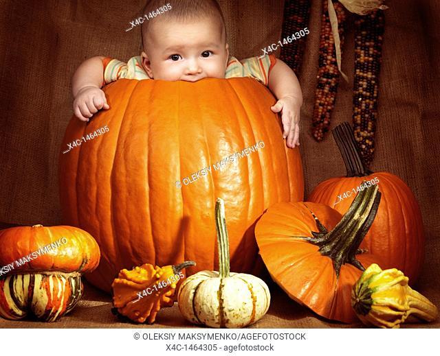 Baby boy sitting inside a big pumpkin  Fall season holidays Thanksgiving and Halloween humorous artistic still life