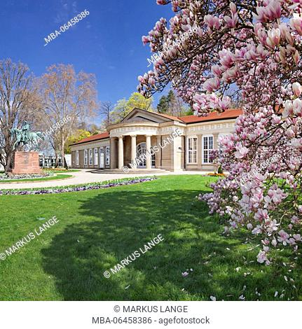 Health resort house, Bad Cannstatt, magnolia blossom, Stuttgart, Baden-Wurttemberg Germany
