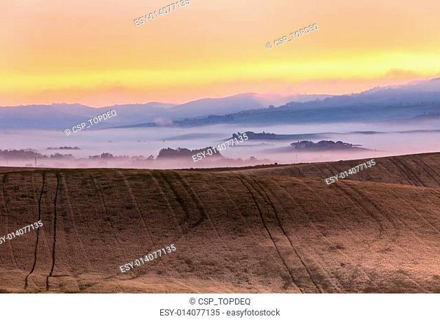 Morning fog view on farmland in Tuscany, Italy
