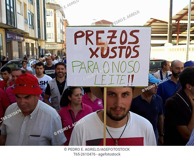 Dairy producers demonstrate in Vilalba, Province of Lugo, Galicia, Spain (20/08/2015)