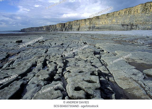 Sedimentary cliffs, Heritage Coast, Vale of Glamorgan, Wales, UK