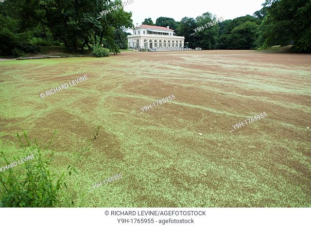 The Audubon Center in the lullwater section of the Prospect Park Lake in Brooklyn in New York The surface of the lake has been covered with the plant Azolla...